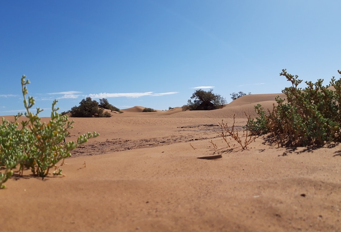 Morocco desert hike