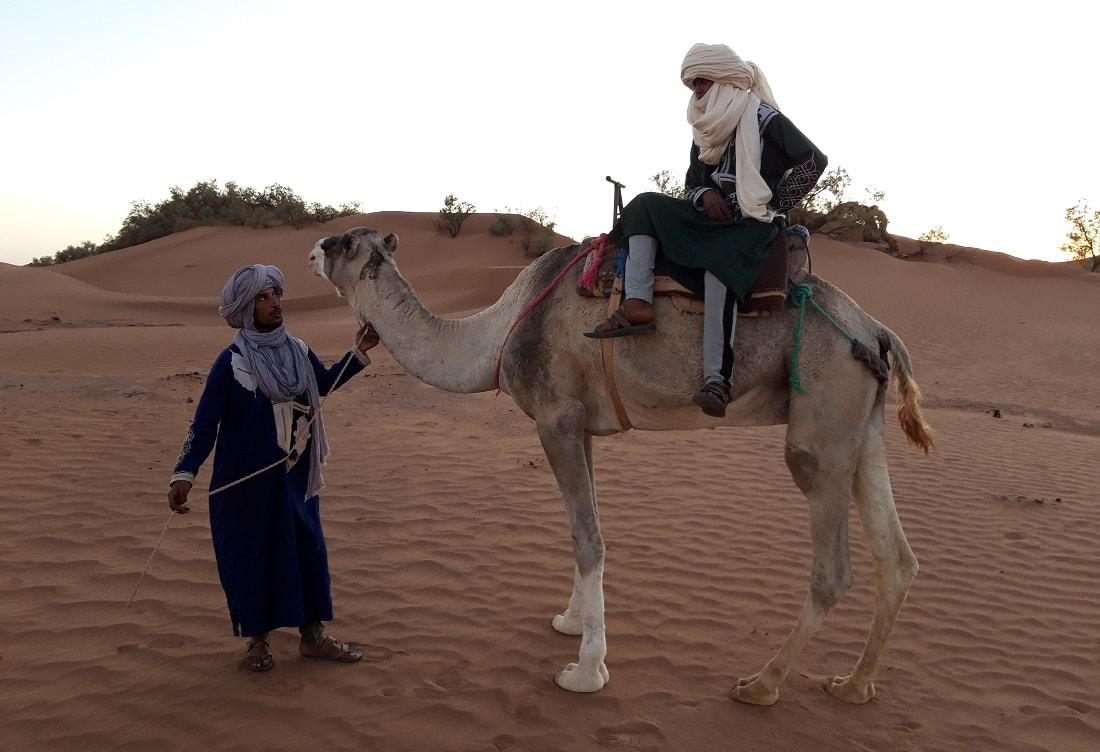 camel tour Morocco desert