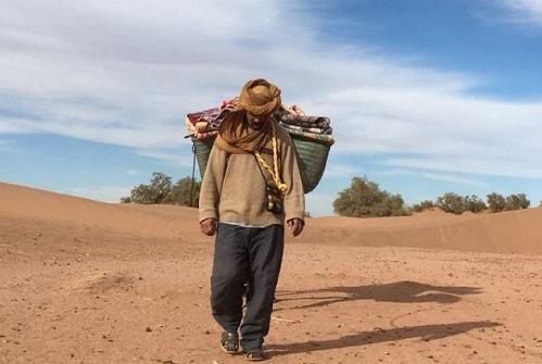 Sahara camel trekking trip
