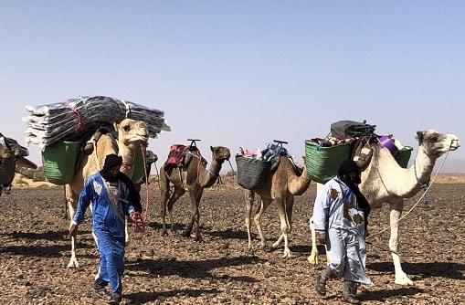 Sahara desert trek Morocco