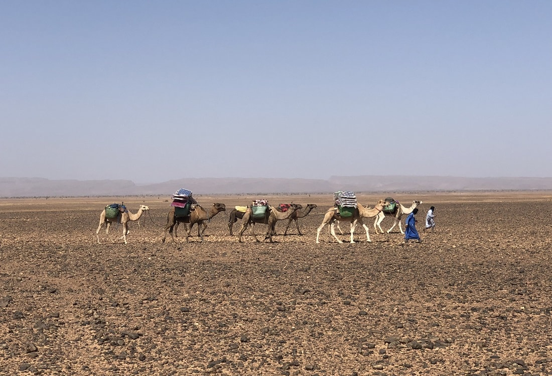 Trek Morocco desert