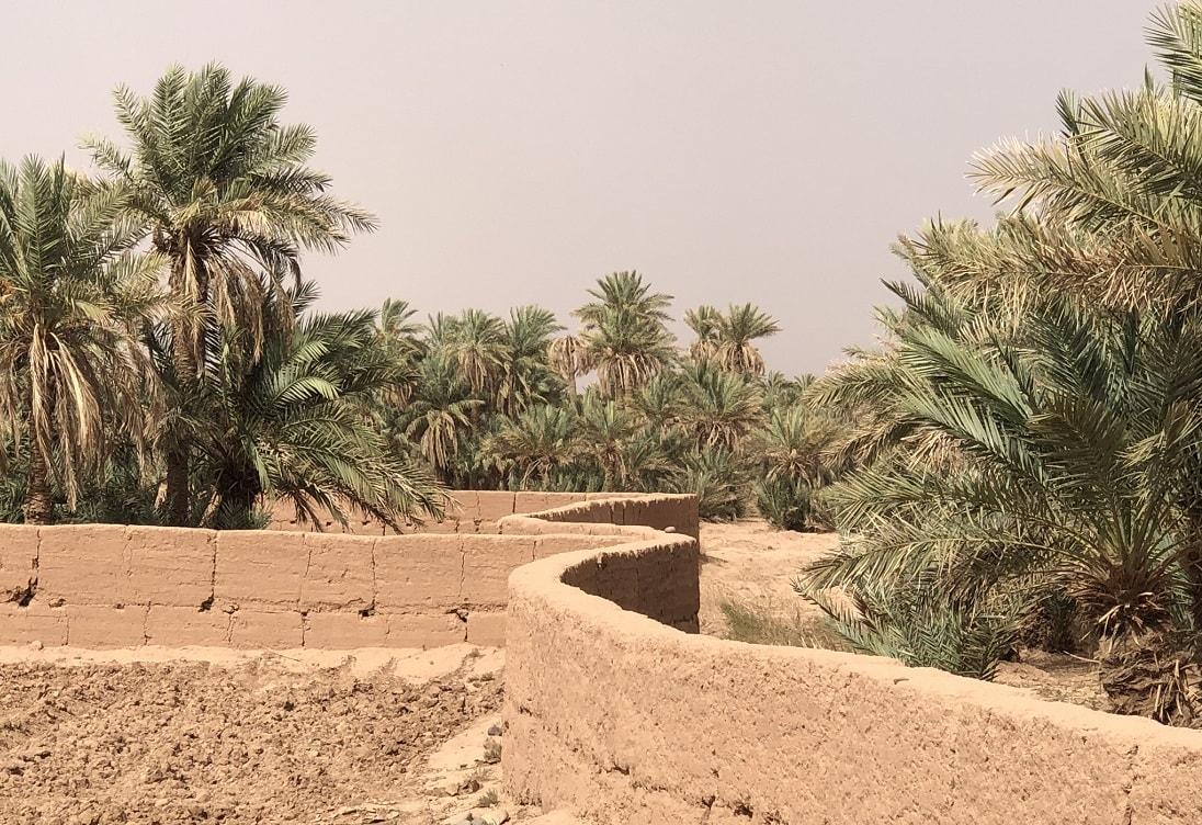 Marrakech Sahara trip